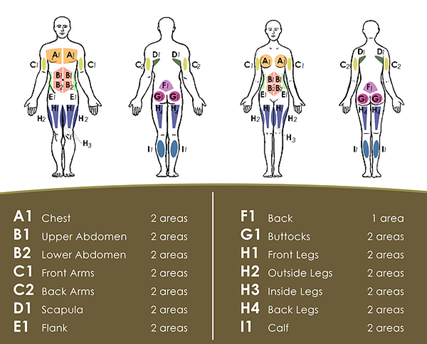 areas that can undergo Liposuction